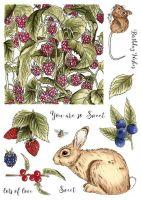 Bunny and Brambles (CS224D)