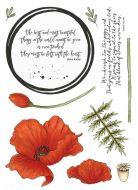 CS182D Hobby Art Stamps - The Poppy Red