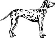 Crafty Stamps - Dalmation - AN146M