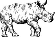 Crafty Stamps - Rhino - AN155M