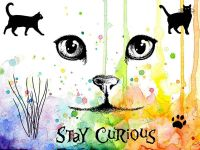 Curious Cats Visible Image Clear Stamp Set