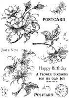 CS207D Hobby Art Stamps - Jeans Flowers