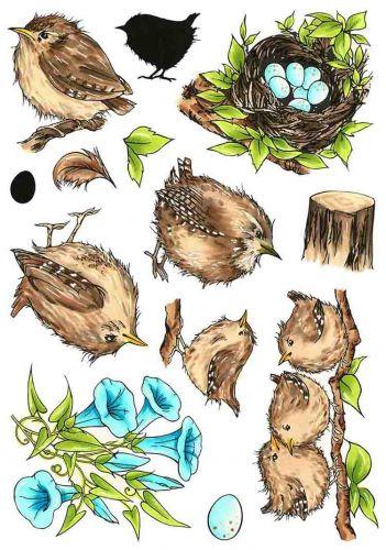 CS247D Hobby Art Stamps - Jenny Wren