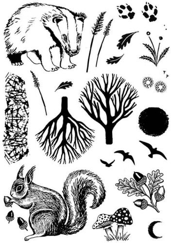 CS237D Hobby Art Stamps - Nature Prints