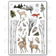 Nature Trail Hobby Art Clear Stamp Set CS138D