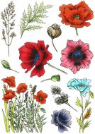Poppies A5 Clear Stamp Stamp Set by Hobby Art (CS299D)