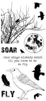 Take Flight Hobby Art Stamp Set (CS196D)