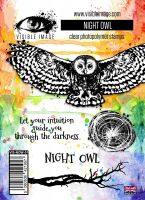 Night Owl stamp set by Visible Image (VIS-NOW-01)