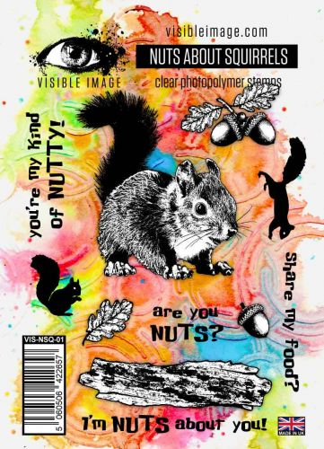 Nuts About Squirrels Stamp Set (VIS-NSQ-01) by Visible Image