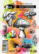 Totally Toadstools Stamp Set (VIS-TOT-01) by Visible Image