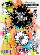 Where Flowers Bloom Stamp Set (VIS-WFB-01) by Visible Image