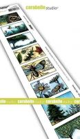 Carabelle Studio - Cling Stamp Edge - 8 labels - Au grand air (SED0038)