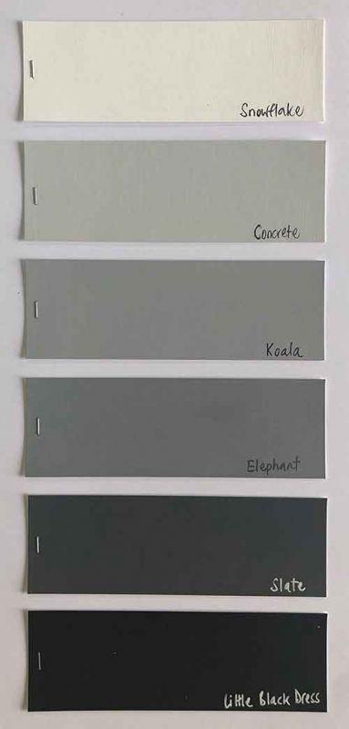 Family 17 - Greys